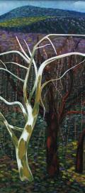 Des arbres d'automne