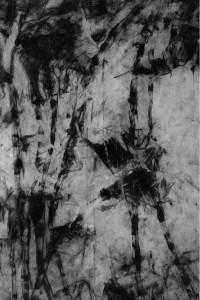 Réti Ágnes-Bambusz II-60x40-70x50-szén-pamutjersey